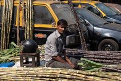 Mumbai Indien, 20 november 2018/socker rottingarbetare royaltyfri foto