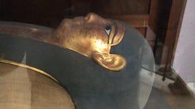 Mumie i kairomuseum Arkivbild