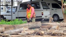 Mumifierat träd för skogsarbetarearbetare sawing lager videofilmer
