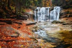 Mumlava瀑布在捷克 库存图片