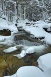 Mumlava river in winter Stock Photography