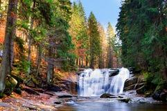 Mumlava siklawy w jesieni Obraz Royalty Free