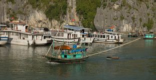 Mummel skäller länge - kryssningfartyg arkivfoto