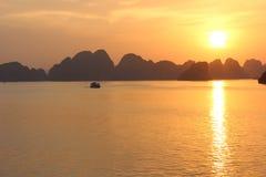 Mummel skäller länge solnedgången Royaltyfri Bild