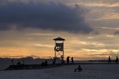 Mummel skäller länge solnedgången Fotografering för Bildbyråer