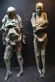 Mummia di Guanajuato, Messico immagini stock libere da diritti