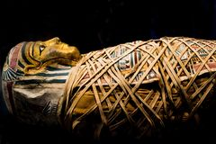 Mummia di Islolated sarcophagous fotografie stock libere da diritti