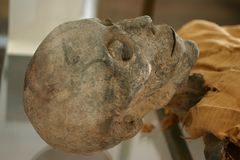 Mummia di scheletro immagini stock