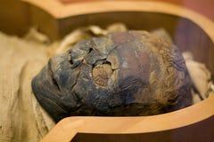 Mummia di Vatican fotografie stock