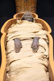 Mummia egiziana immagine stock