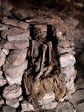 Mummia nelle Ande fotografie stock