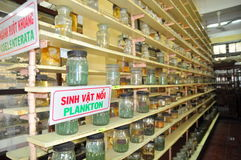 Mummified specimen of all kinds of fish and sea life in liquid are stored and showed to tourists at the Vietnam Institution of Oce Stock Photos