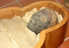 Mummy. Very well conserved mummy detail royalty free stock images