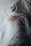Mummy Royalty Free Stock Image