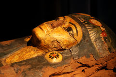 Mummy. Coffin from the ancient Egypt royalty free stock image
