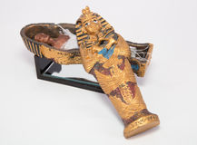 Mummy in casket Stock Images