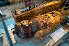 Mummy egypt, The British Museum in London, England, UK.  stock image