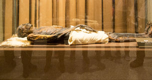 Mummy of Egypt in Winter Palace, St Petersburg ,Russia. Mummy of Egypt is taken in Winter Palace, St Petersburg ,Russia stock image