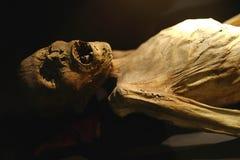 Mummy Of Guanajuato, Mexico Stock Photo