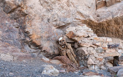 The mummy of Paraqra. In peru, south america Royalty Free Stock Photos