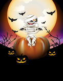 Mummy and pumpkins Royalty Free Stock Images