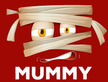 Mummy wrapped with cloth Stock Images
