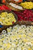Mums i róże dla sprzedaży fotografia stock