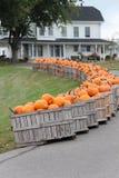 Crates of pumpkins. Bright orange pumpkins in crates lined along a driveway Stock Images