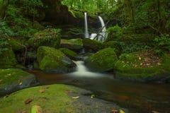 Mun Daeng Waterfall den härliga vattenfallet i djup skog på P Arkivbild