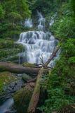 Mun Daeng Waterfall den härliga vattenfallet i regnig säsong för djup skog på den Phu Hin Rong Kla nationalparken, Phitsanulok, T Arkivbild