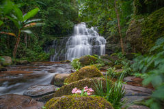 Mun Daeng Waterfall, der schöne Wasserfall in der tiefen Waldregenzeit an Nationalpark Phu Hin Rong Kla, Phitsanulok, Thailand Stockbild