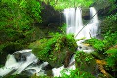 Mun Daeng waterfall,Pisa-nu-loke,Thailand Royalty Free Stock Images