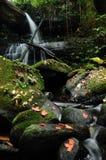 Mun Daeng Waterfall, THailand Royalty Free Stock Images