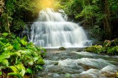Mun Dang Waterfall en la estación verde fresca de la lluvia del bosque profundo en Tha Foto de archivo libre de regalías