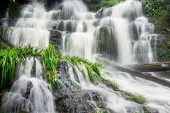 Mun Dang Waterfall en la estación verde fresca de la lluvia del bosque profundo en Tha Fotos de archivo libres de regalías