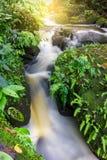 Mun Dang Waterfall en la estación verde fresca de la lluvia del bosque profundo en Tha Imagen de archivo libre de regalías