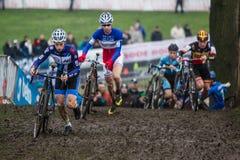 Mundial Cyclocross - Hoogerheide, Países Bajos de UCI Foto de archivo libre de regalías