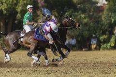 Mundial Rider Action de PoloCrosse Foto de archivo libre de regalías