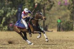 Mundial Rider Action de PoloCrosse Imagen de archivo libre de regalías