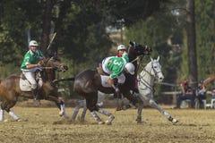 Mundial Rider Action de PoloCrosse Imágenes de archivo libres de regalías