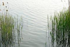 Mundo da água Foto de Stock Royalty Free