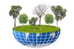 Mundo das árvores. Fotografia de Stock Royalty Free