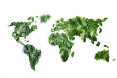 Mundo das folhas Fotos de Stock