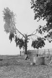 Mundo del fantasma Fotografía de archivo libre de regalías