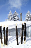 Mundo do gelo e da neve foto de stock