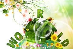 Mundo e flores Imagens de Stock
