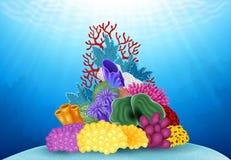 Mundo hermoso de Coral Underwater Fotografía de archivo libre de regalías