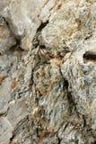 Mundo microscópico dos cristais Fotografia de Stock