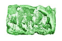 Mundo misterioso hermoso Pintura del verde de la técnica de Ebru Foto de archivo