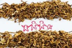 Mundo ningún día del tabaco Imágenes de archivo libres de regalías